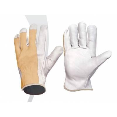 Guante con palma en piel y dorso en algodón. Puño elástico. Color blanco. Pack 12 pares. WTG1501