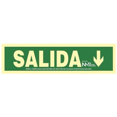 SEÑAL SALIDA FLECHA ABAJO...