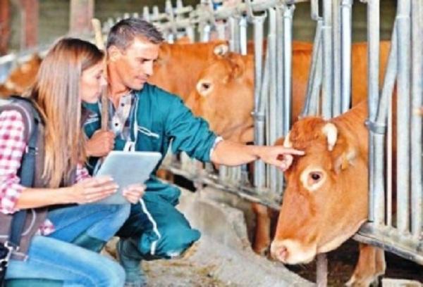 Sector agrario, higiene y medidas preventivas
