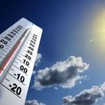 Combatir el estrés térmico y la radiación solar