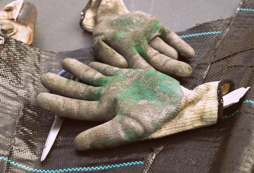 guantes 2-min