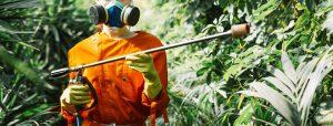 5 EPIs esenciales para la protección ante el uso de productos fitosanitarios en la jardinería